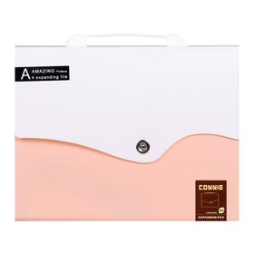 Папка-портфель 13 отделений, формат А4, на кнопке, светло-розовый+белый