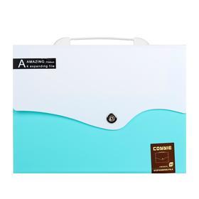 Папка-портфель 13 отделений, формат А4, на кнопке, светло-зеленый+белый