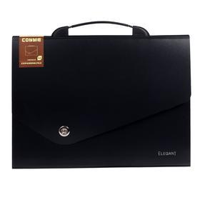 Папка-портфель 13 отделений, формат А4, на кнопке, черный