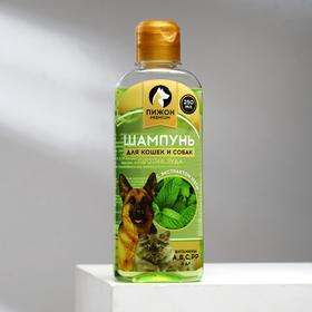 """Шампунь """"Пижон Premium"""" для кошек и собак, против зуда, с экстрактом мяты, 250 мл"""