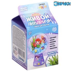 EUREKA set for experiments Live aquarium-florarium, cute little mermaid