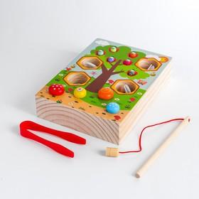 "Children's educational set ""Fishing + mushrooms + bees"" 14, 2x19, 5x4 cm"