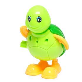 Игрушка заводная «Черепашка», цвета МИКС