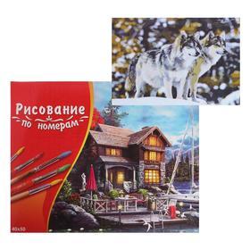 Картина по номерам 40×50 см в коробке, 20 цветов «Красивые волки»
