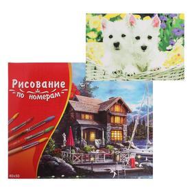Картина по номерам 40×50 см в коробке, 20 цветов «Щенки терьера»