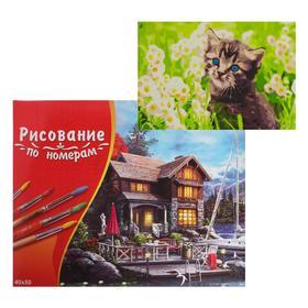 Картина по номерам 40×50 см в коробке «Котёнок в ромашках»