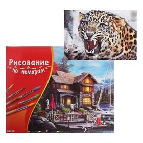 Картина по номерам 40×50 см в коробке «Рычащий леопард»