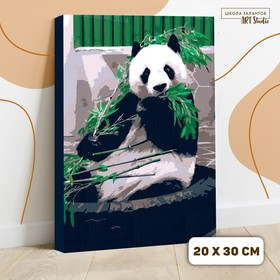 """Painting by numbers on canvas """"Panda"""", 30*20 cm"""