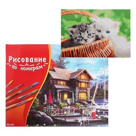 Картина по номерам 40×50 см в коробке, 20 цветов «Пушистые котята в корзинке»