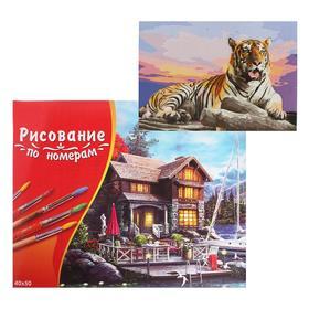 Картина по номерам 40×50 см в коробке «Большой тигр на закате»