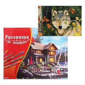 Картина по номерам 40×50 см в коробке «Волк в осеннем лесу»