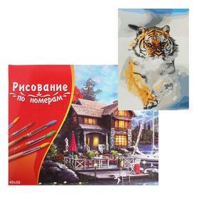 Картина по номерам 40×50 см в коробке «Тигр в снегу»