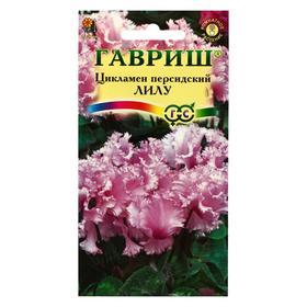 "Семена цветов Цикламен ""Лилу"", персидский, 3 шт"