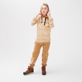 Брюки для мальчика, цвет коричневый, рост 140 см
