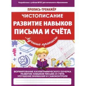 Развитие навыков письма и счёта. Пилецкий В.