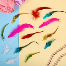 Набор перьев для декора «Павлин», 12 шт.