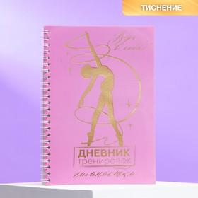 Дневник тренировок с тиснением «Дневник тренировок гимнастки»,14,8 х 21 см