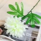 цветы искусственные (стебель-пластик,бутон-ткань) пион 46см, d-14 белый - фото 4455439