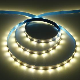 Светодиодная лента Ecola PRO, 12В, SMD3528, 5 м, IP20, 4.8Вт/м, 60 LED/м, 2800К