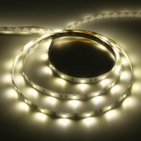 Светодиодная лента Ecola PRO, 12В, SMD5050, 5 м, IP20, 7.2Вт/м, 30 LED/м, 2800К