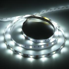 Светодиодная лента Ecola PRO, 12В, SMD5050, 5 м, IP20, 7.2Вт/м, 30 LED/м, 6000К