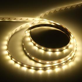 Светодиодная лента Ecola PRO, 12В, SMD2835, 5 м, IP20, 8Вт/м, 60 LED/м, 2800К