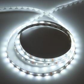 Светодиодная лента Ecola PRO, 12В, SMD2835, 5 м, IP20, 8Вт/м, 60 LED/м, 6000К