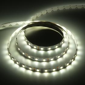 Светодиодная лента Ecola PRO, 12В, SMD5050, 3 м, IP20, 14.4Вт/м, 60 LED/м, 4200К