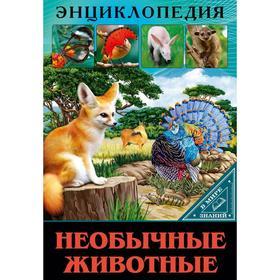 Необычные животные. Соколова Л.