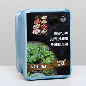 Набор для выращивания на балконе микрозелени Мангольд