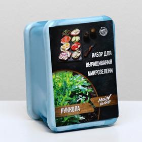 Набор для выращивания на балконе микрозелени Руккола