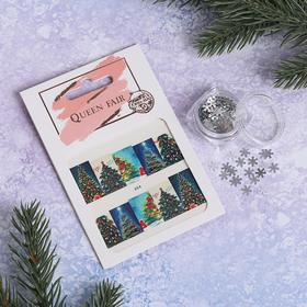 Nail art set: stickers, sequins snowflakes silver #2 package
