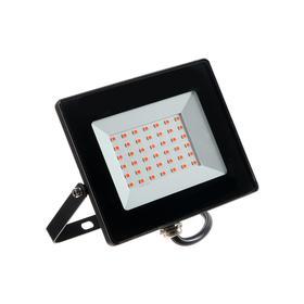Прожектор светодиодный Smartbuy FL SMD LIGHT, ФИТО, 30 Вт, IP65