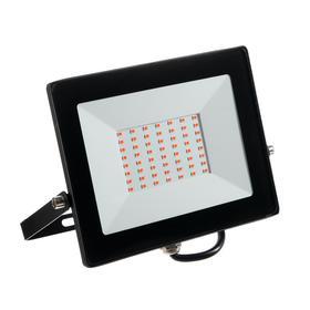 Прожектор светодиодный Smartbuy FL SMD LIGHT, ФИТО, 50 Вт, IP65