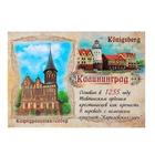 Магнит закатной «Калининград. Кафедральный собор»