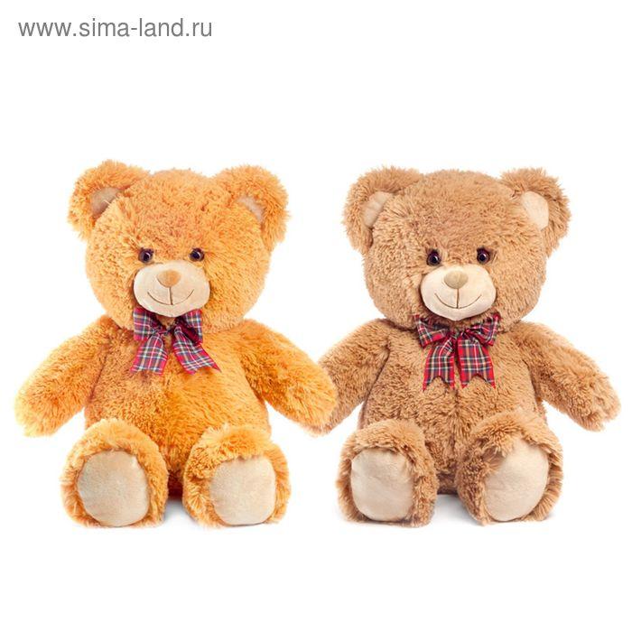 Мягкая игрушка «Медведь» музыкальная, цвета МИКС