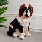 "Копилка ""Собака Бетховен"" флок, чёрно-рыжая"