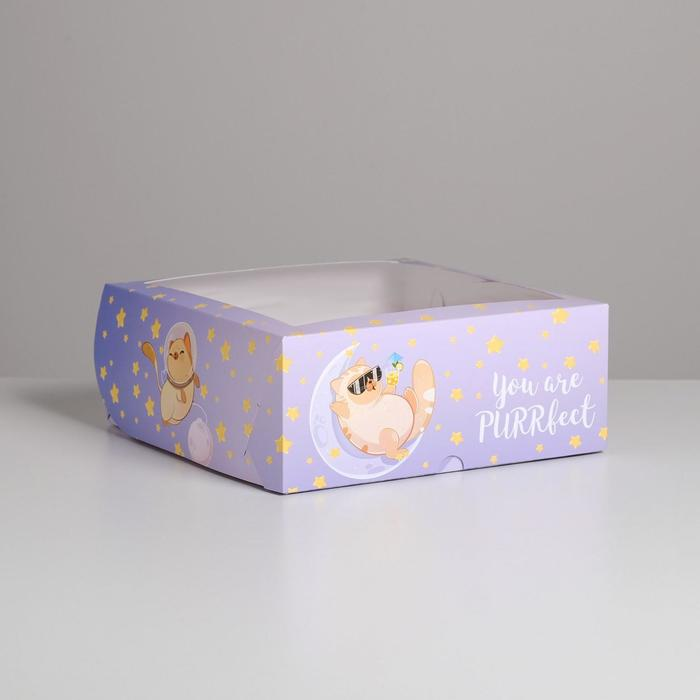 Коробка на 9 капкейков PURRfect 25 х 25 х 10см - фото 1057703