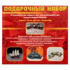 Сборная модель «Современный российский фронтовой истребитель МиГ-29» - фото 1007594