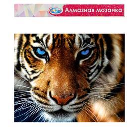 Алмазная мозаика без подрамника, частичное заполнение «Тигр» 40×50 см