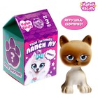 """HAPPY VALLEY surprise Toy """"Your pet Lapsy Lou"""" MIX"""