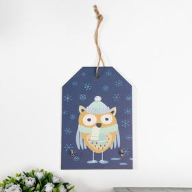 """Decorative hooks """"owl in a hat and scarf"""" 15x10x1, 5 cm"""