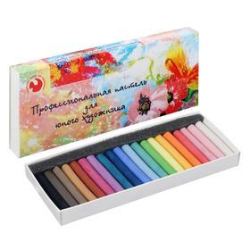 """Пастель сухая Medium, набор 20 цветов """"Для юного художника"""" (длина 55± 1мм; диаметр8 мм± 1мм)"""