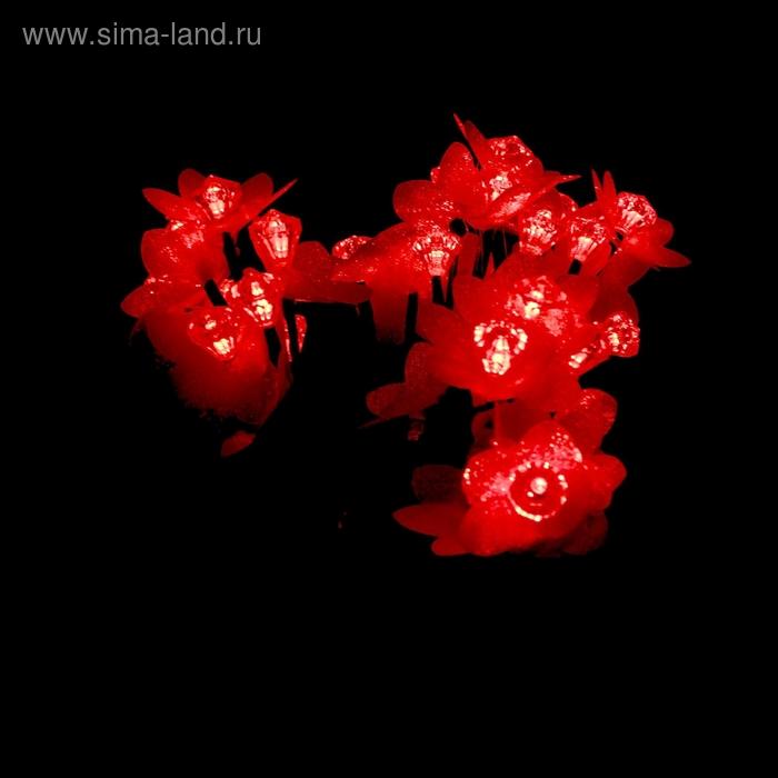 """Светодиодный куст уличный 0,3 м, """"Красный рубин"""", 32 LED, 220V, КРАСНЫЙ"""