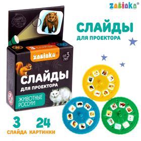 Слайды для проектора «Животные России», набор