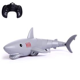 Акула радиоуправляемая «Белая», плавает, работает от батареек
