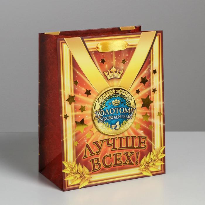 Пакет ламинированный «медаль коллаж Золотому руководителю», MS 18 × 23 × 10 см