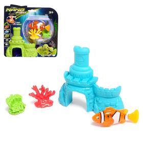 """Aquarium fish """"Clown"""", swimming in water, with aquarium, MIX"""