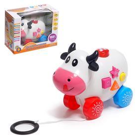 """A wheelchair-sorter """"Cow"""""""