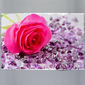 """Sticker on a tile """"Pink rose"""" 60x90 cm"""